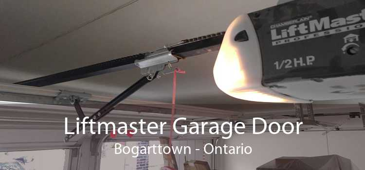 Liftmaster Garage Door Bogarttown - Ontario